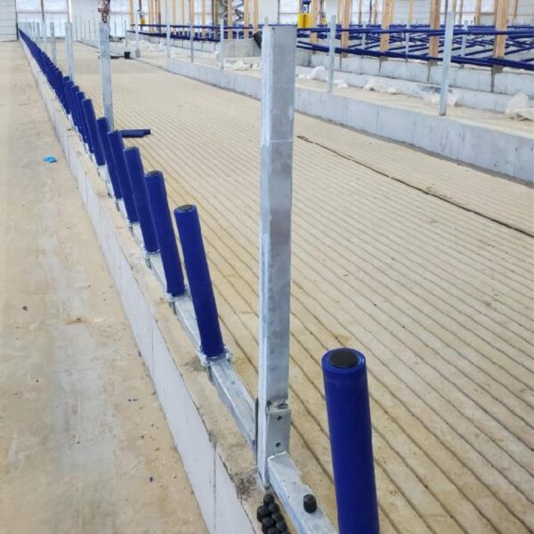 Agromatic FreeFEED cattle headlock alternative (installed).