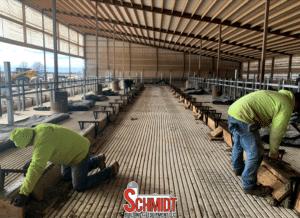 Schmidt Buildings concrete install in new dairy barn.