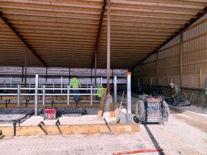 Siebrand Heifer barn freestall installation start.