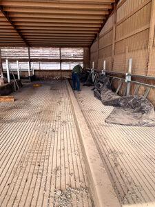 Siebrand Heifer barn freestalls being prepped for install.