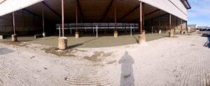 Siebrand Heifer barn fresh concrete pour completed.