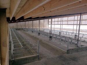 Siebrand Heifer barn remodel after finished (back corner view).